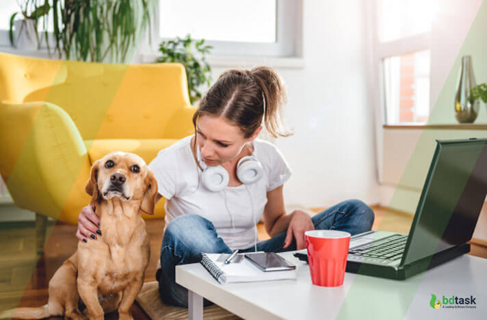 Pet Sitting Services